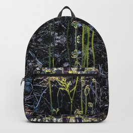 Fiddle heads Backpack