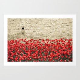 Tower Poppies 02A Art Print