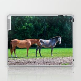 Pasture Friends Laptop & iPad Skin