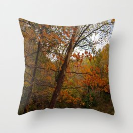 Fall in the Cuyahoga Valley National Park Throw Pillow