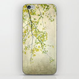 wake me up when september ends iPhone Skin