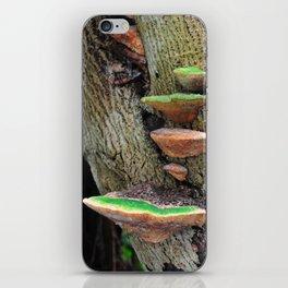 Bracket fungus (#1) iPhone Skin