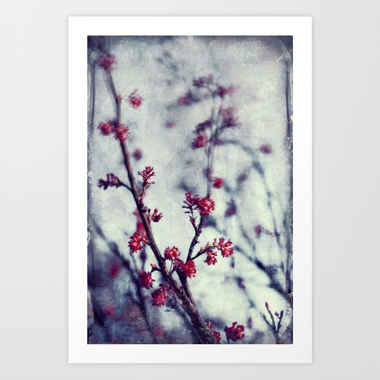 scarlet spring Art Print