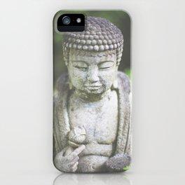 Peaceful oasis iPhone Case