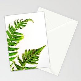 Fern on white Stationery Cards