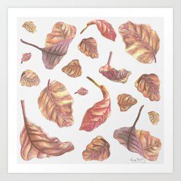 Falling Autumn Leaves Colored Pencil Drawing Autumn Colours Art Print