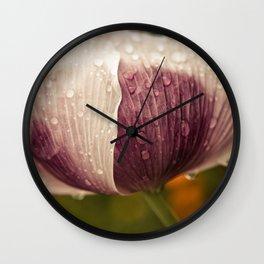 Purple Papaver Somniferum Poppy Raindrops Wall Clock