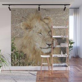 Friendly lion Wall Mural