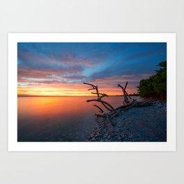 Sunset, Driftwood Art Print