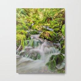 Rainforest Creek Metal Print