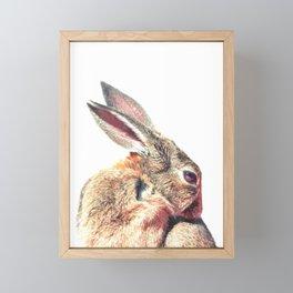 Rabbit Portrait Framed Mini Art Print