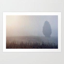 Lone Cedar Art Print