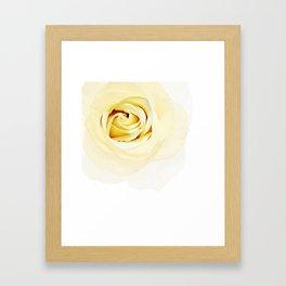 Whtie Rose Framed Art Print