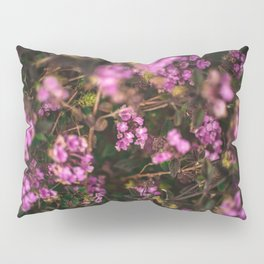 Trailing Lantana Flower Printable Wall Art | Floral Plant Botanical Nature Outdoors Macro Photography Print Pillow Sham