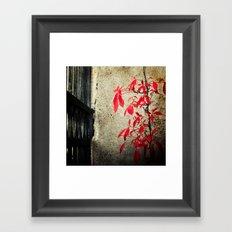 Castle Gate Red Creeper Framed Art Print