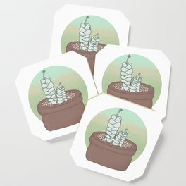 Crassula Deceptor Guardians Coaster
