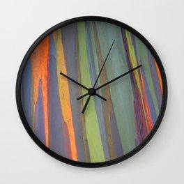 Rainbow Eucalyptus Magic Wall Clock