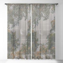 Moon through tree tops Sheer Curtain