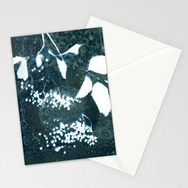 Botanicus (17), Botanical Art Print, Art Print, Botanical Poster, Vintage Print, Home Decor Stationery Cards