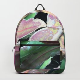 """Epiphyllum, """"Orchid Cactus"""" Backpack"""