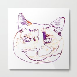Torti Kitty Metal Print