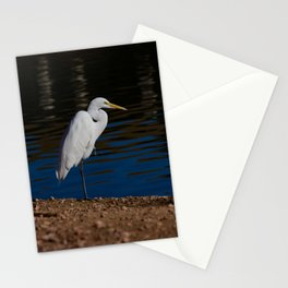 Great_Egret - Nevada Stationery Cards