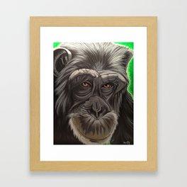 Sweet Toddy Framed Art Print