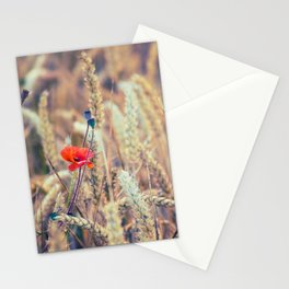 Wild Poppy in the Wheat Field Stationery Cards
