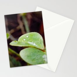 Drop of Nature Stationery Cards