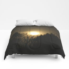 The Perfect Moon Comforters