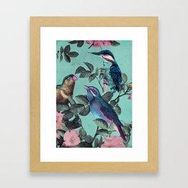 Kingfisher Kingdom Framed Art Print
