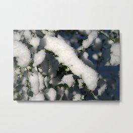 Fresh Snow on the Holly Metal Print