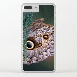 In Pefect Balnce Clear iPhone Case