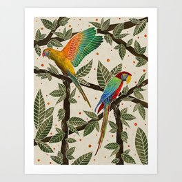 'Miyan Mithoo' Parrot Art Art Print