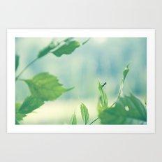lil bug Art Print