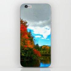 Silver Lake iPhone & iPod Skin
