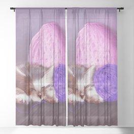 Tiny Sleepy Kitten Sheer Curtain