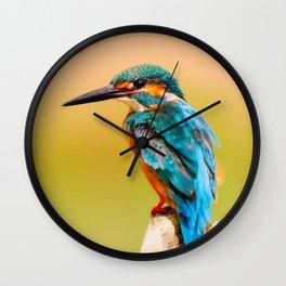 Radiant Bird Wall Clock