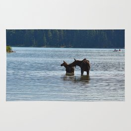 Moose and calf in Maligne Lake, Jasper National Park Rug