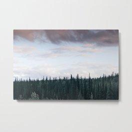 Alaska Trees in Denali National Park Metal Print