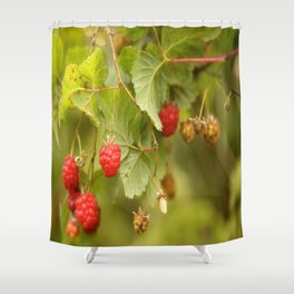 Sweet Raspberry Branches #decor #society6 Shower Curtain