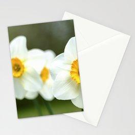 spring_2 Stationery Cards