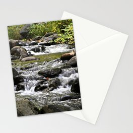 Shaping a Path Stationery Cards