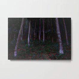 Forest in Transylvania Metal Print