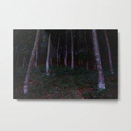 Forest in Transylvania Metal Print