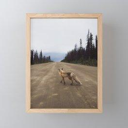 Road Fox Framed Mini Art Print
