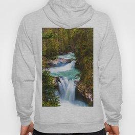 Waterfall Paradise (Color) Hoody