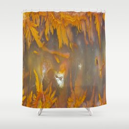 Mexican Flame Agate Shower Curtain