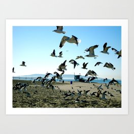 Seagulls and the Sea Art Print