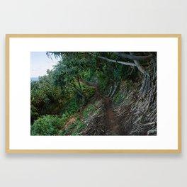 Kalalau Framed Art Print